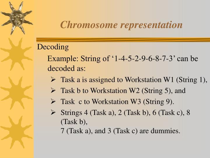Chromosome representation