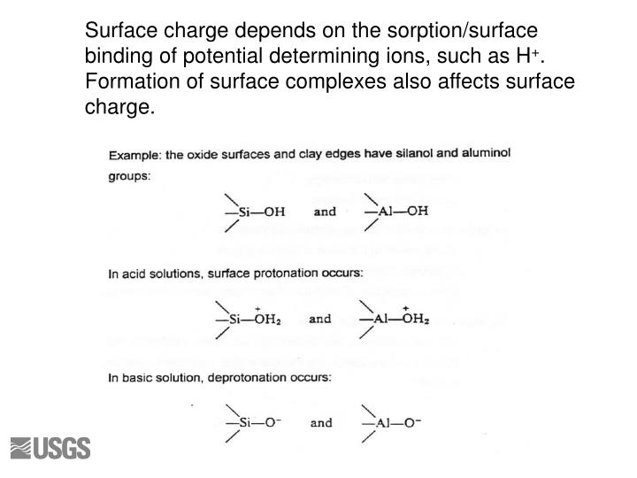 Surface charge depends on the sorption/surface binding of potential determining ions, such as H