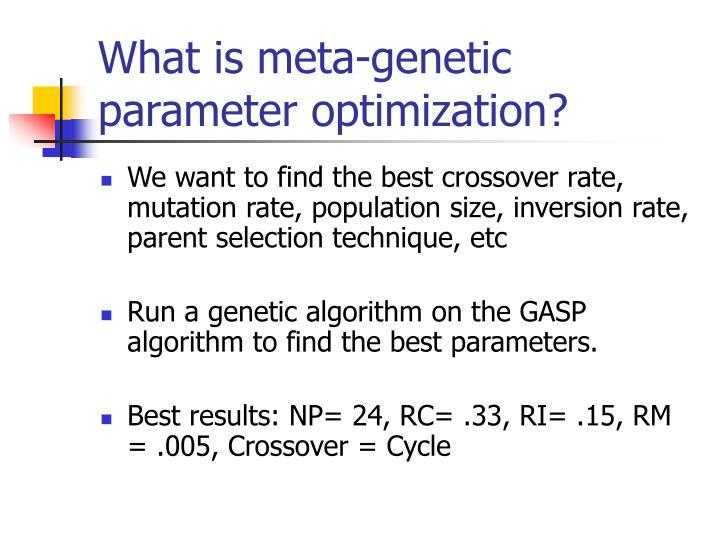 What is meta-genetic parameter optimization?