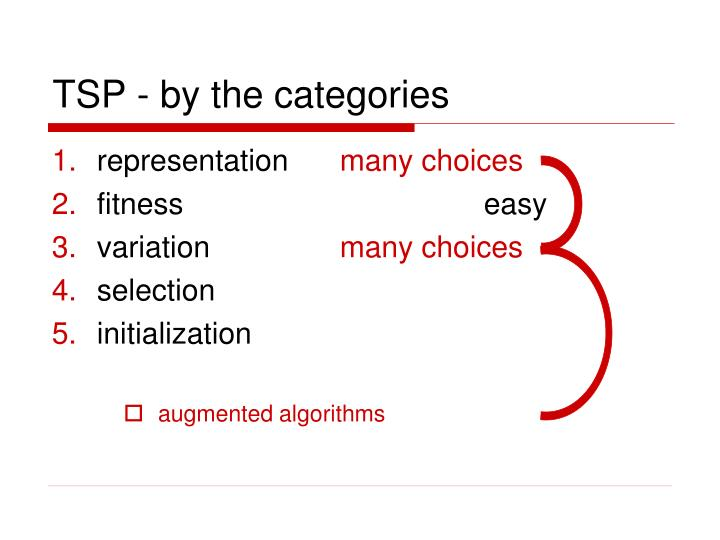 TSP - by the categories