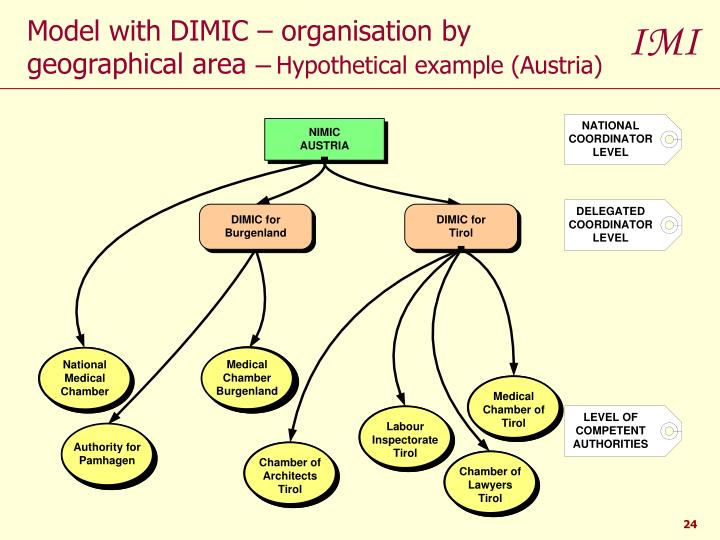 Model with DIMIC – organisation by geographical area