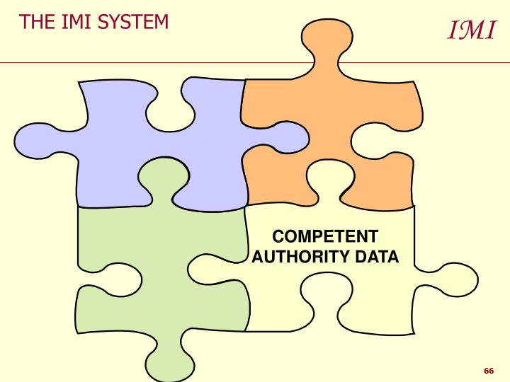 THE IMI SYSTEM