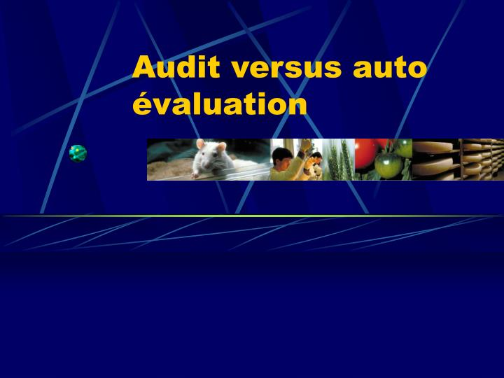 Audit versus auto évaluation