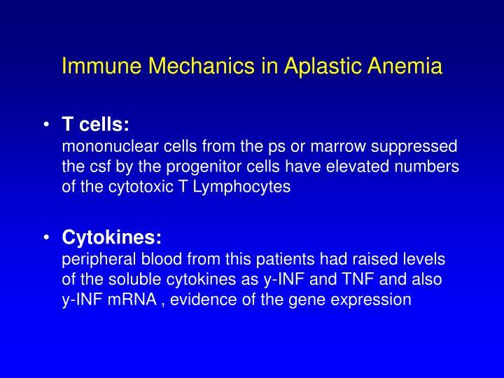 Immune Mechanics in Aplastic Anemia