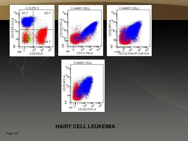 HAIRY CELL LEUKEMIA