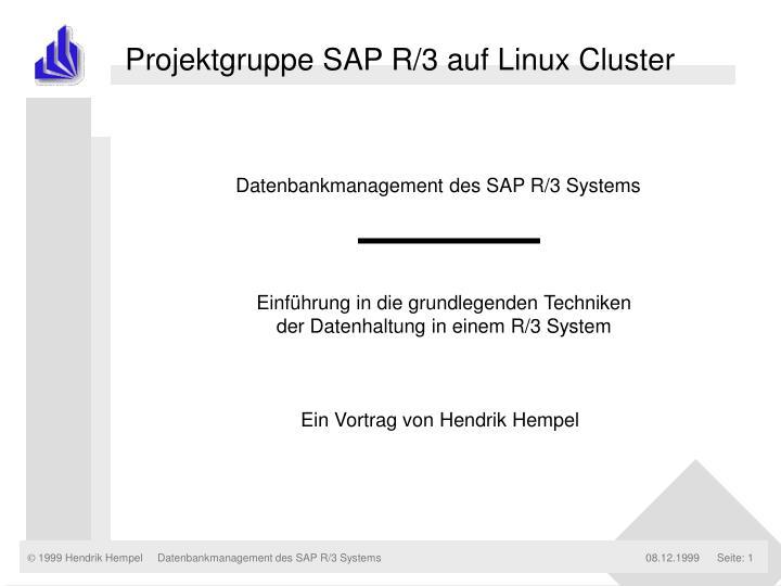 Projektgruppe SAP R/3 auf Linux Cluster