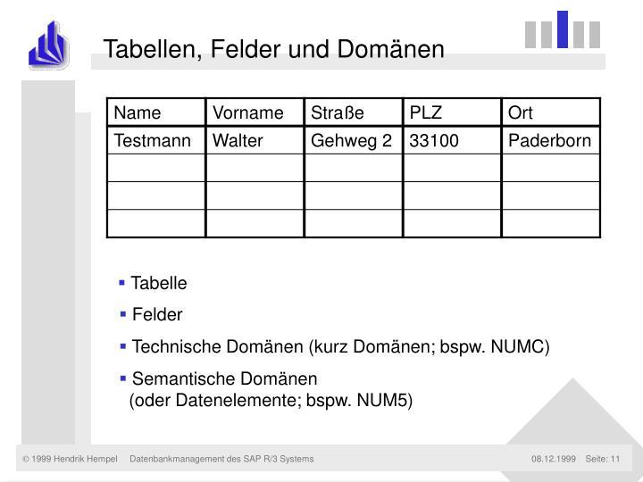 Tabellen, Felder und Domänen