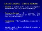 aplastic anemia clinical features