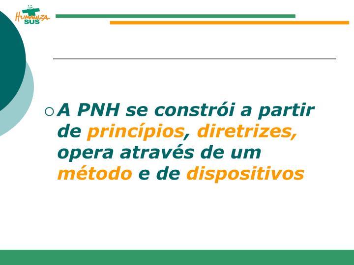 A PNH se constrói a partir de