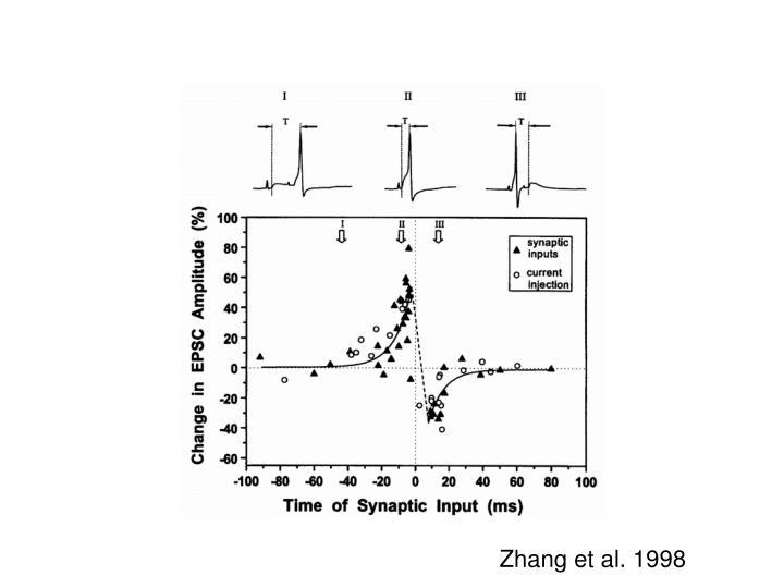 Zhang et al. 1998