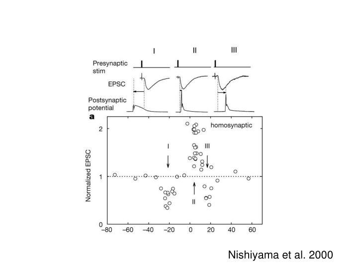 Nishiyama et al. 2000