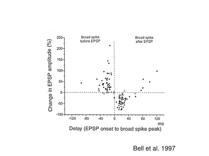 Bell et al. 1997