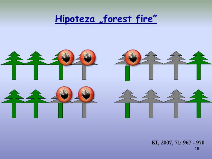 """Hipoteza """"forest fire"""""""