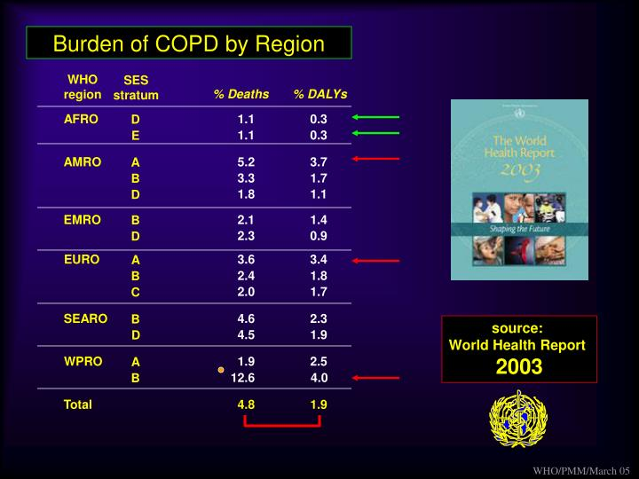 Burden of COPD by Region