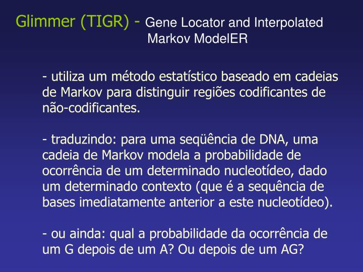 Glimmer (TIGR) -