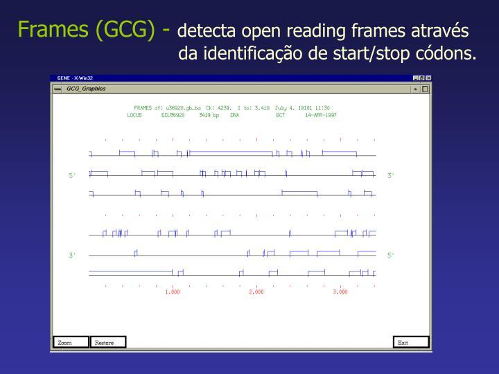 Frames (GCG) -