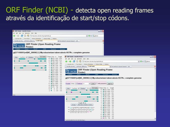 ORF Finder (NCBI) -