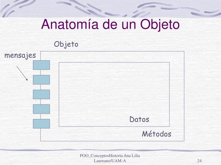 Anatomía de un Objeto