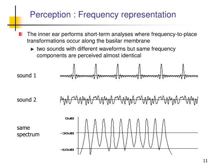 Perception : Frequency representation