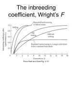 the inbreeding coefficient wright s f2