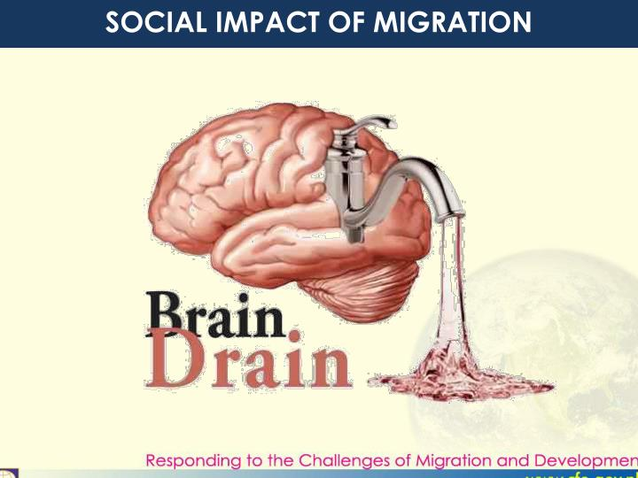 SOCIAL IMPACT OF MIGRATION