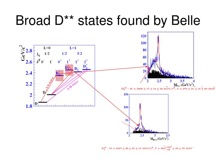 Broad D** states found by Belle