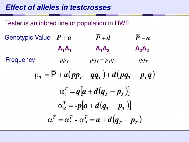 Effect of alleles in testcrosses
