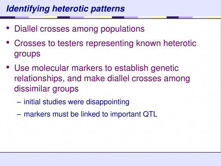 Identifying heterotic patterns