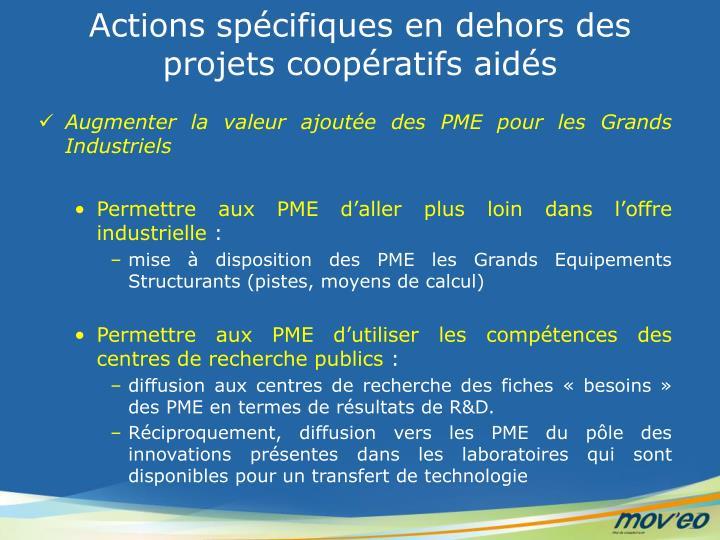 Actions spécifiques en dehors des projets coopératifs aidés