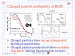 charged particle multiplicity at rhic1