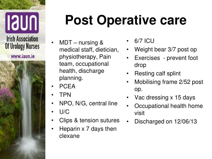 MDT – nursing & medical staff, dietician, physiotherapy, Pain team, occupational health, discharge planning.