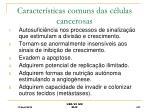 caracter sticas comuns das c lulas cancerosas