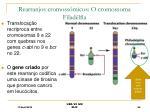 rearranjos cromoss micos o cromossoma filad lfia
