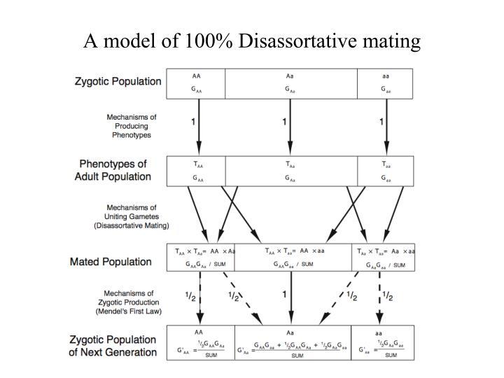 A model of 100% Disassortative mating