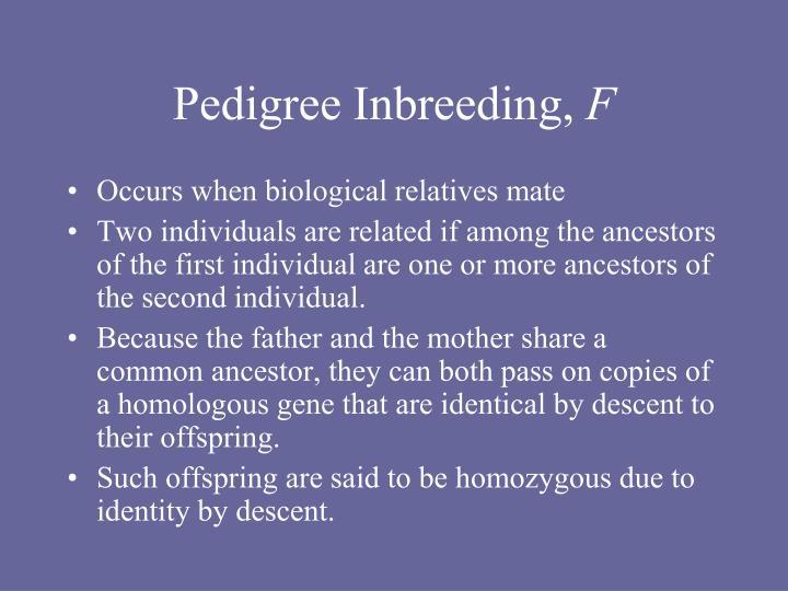 Pedigree Inbreeding,