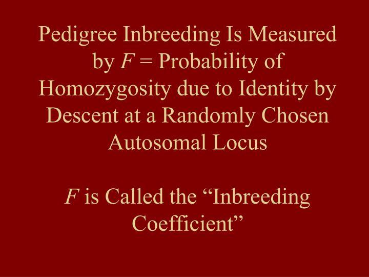 Pedigree Inbreeding Is Measured by