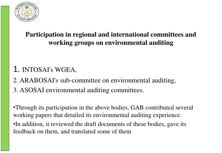 Participation in regional and international committees and working groups on environmental auditing