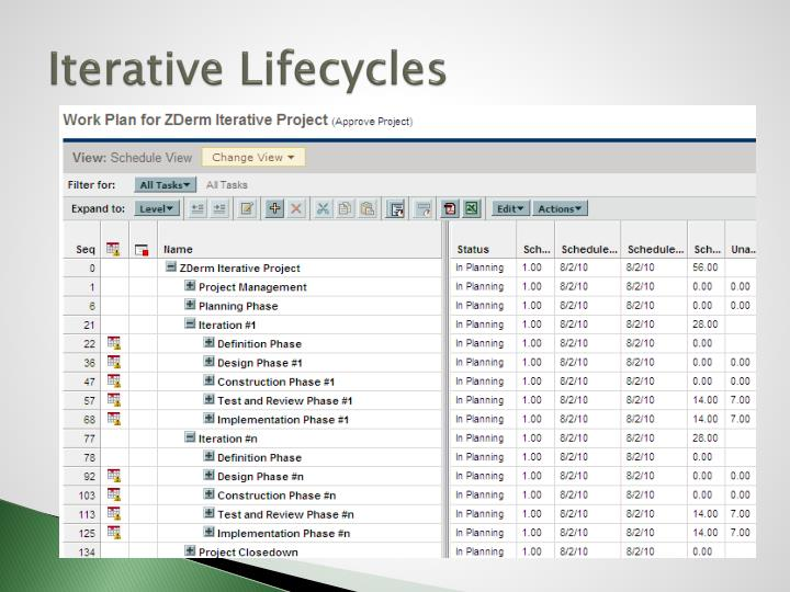 Iterative Lifecycles