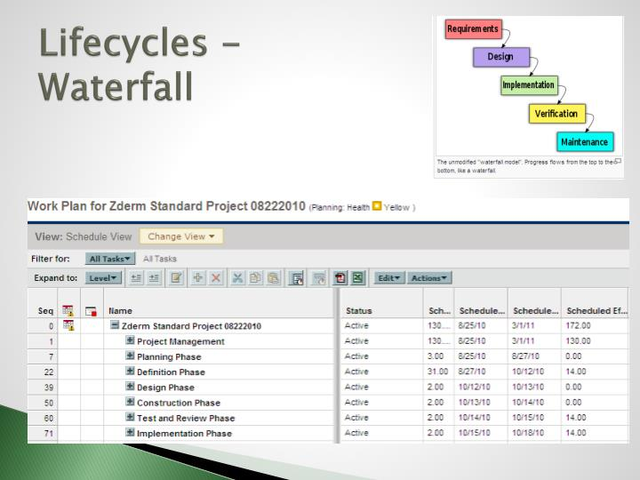 Lifecycles -