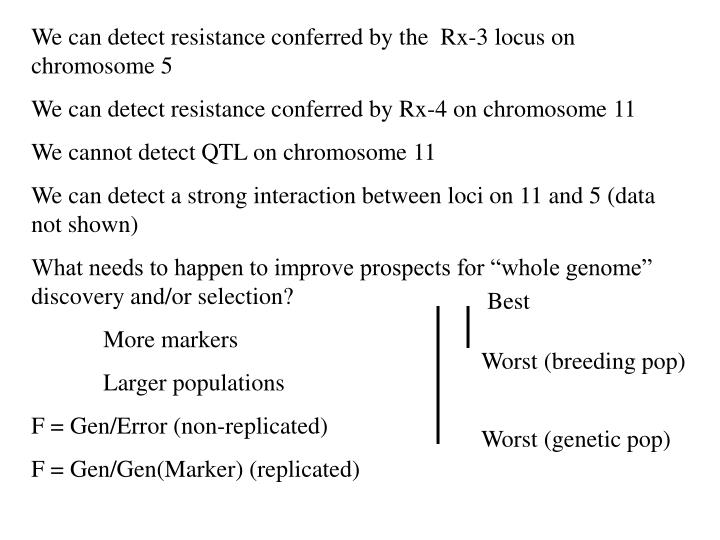We can detect resistance conferred by the  Rx-3 locus on chromosome 5