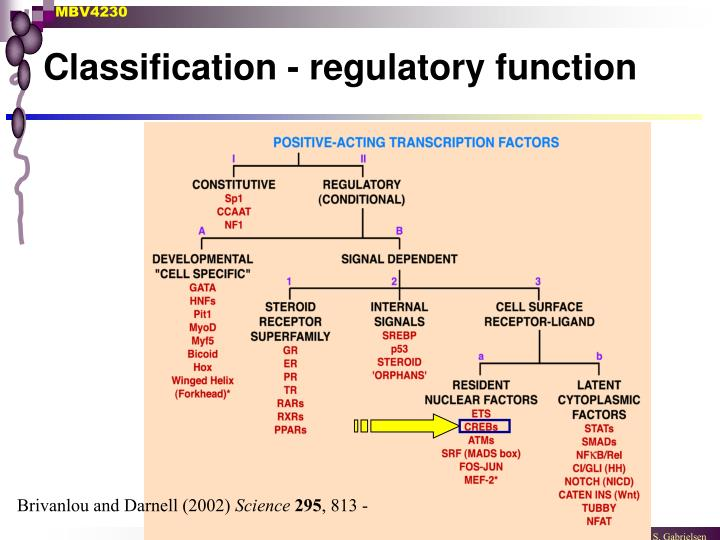 Classification - regulatory function