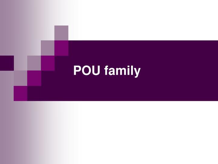 POU family