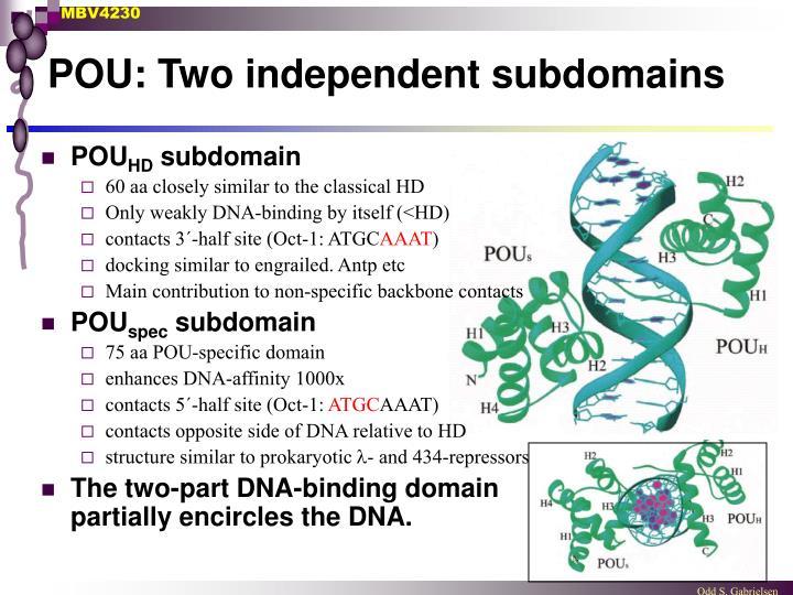 POU: Two independent subdomains