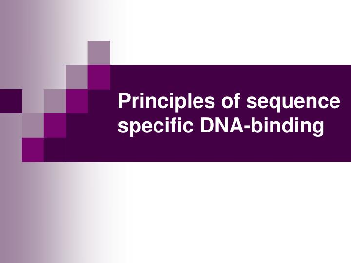 Principles of sequence specific DNA-binding