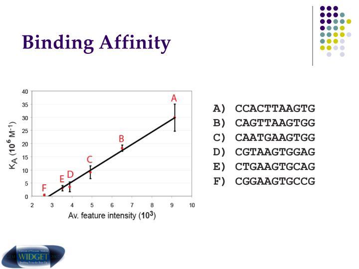 Binding Affinity