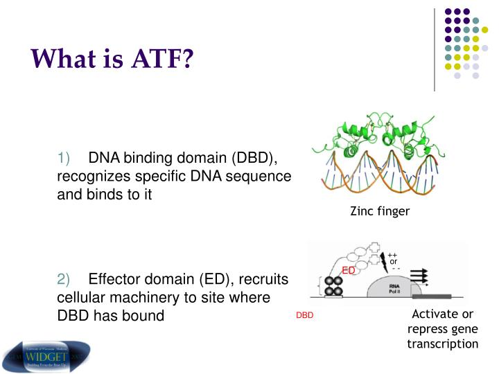 What is ATF?