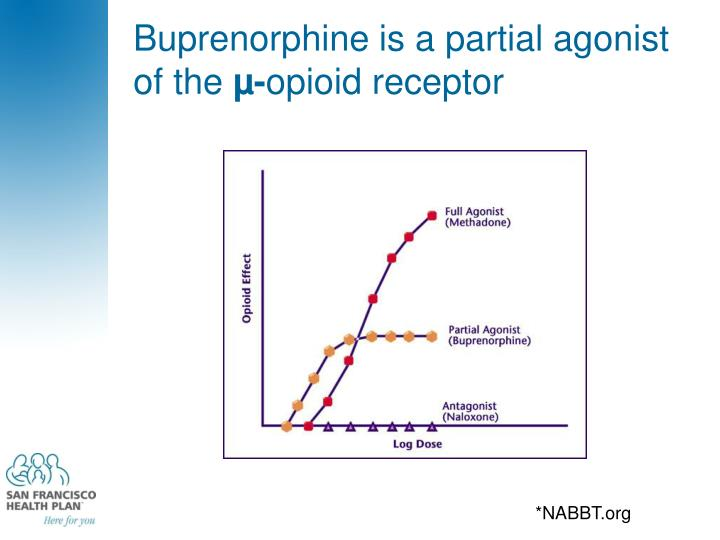 Buprenorphine is a partial agonist of the