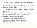 flhsa cms community wide process