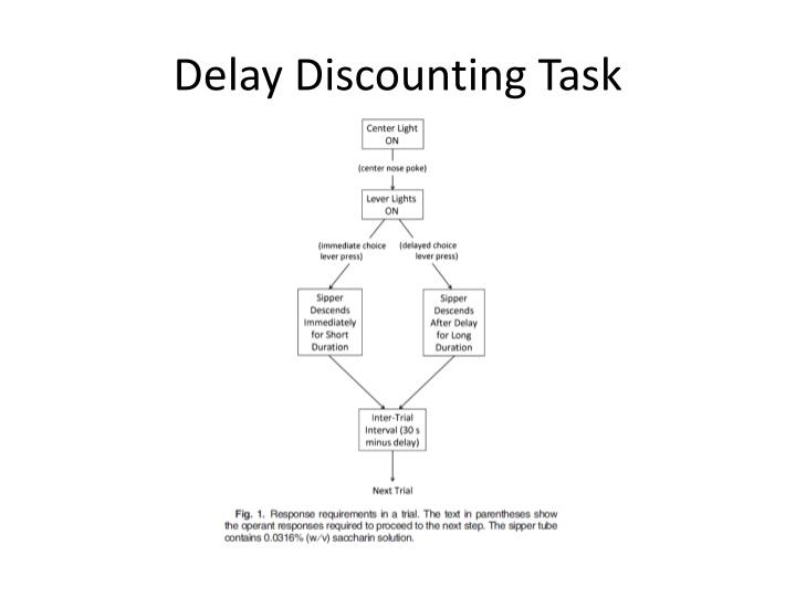 Delay Discounting Task
