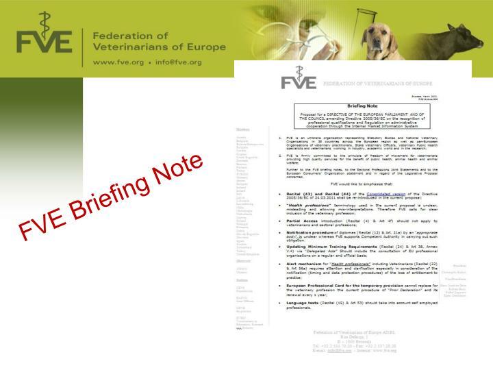 FVE Briefing Note